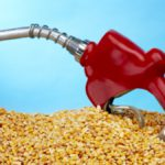 Átalakulóban a bioüzemanyagok