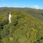 Fokozottan védett erdők láncfűrész alatt