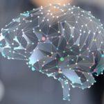 Neuromarketing: reklámok az agy hullámhosszán