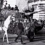 Hogyan maradtunk a németek utolsó csatlósai a II. világháborúban?