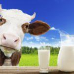 Olcsóbb lett a dobozos tej! De meddig?