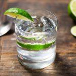 Gin a pálinka hazájából