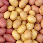 Miért ilyen drága a krumpli?