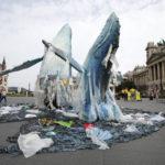 Mit keresnek a bálnák Budapesten?