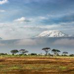 Adóvilág: Kenya