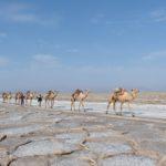 Adóvilág: Etiópia