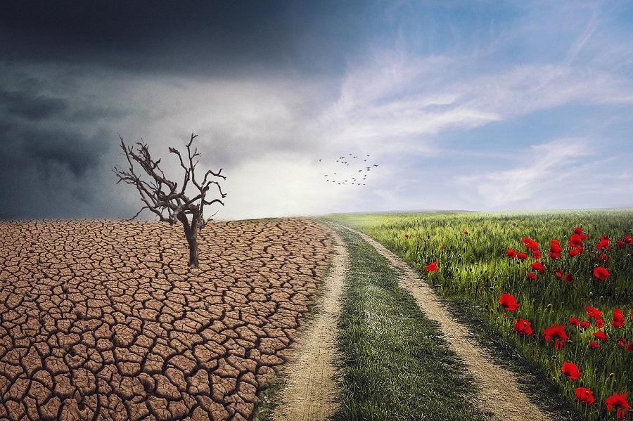 Még nyolc pont a kormány klímavédelmi akcióterve mellé