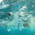Végre! Búcsú az egyszer használatos műanyagoktól!