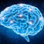 Az agykutatás és idegtudomány legújabb kutatásai, eredményei