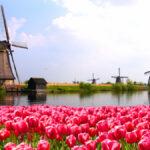 ADÓVILÁG: Hollandia